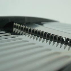 mandolin-2