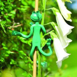 frog ties 3