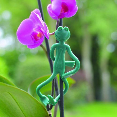 frog ties web 1